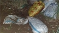 Yer: Van... Çuvallar içinde bulundu