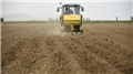 Niğde'de patates ekim alanı arttı