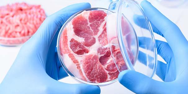 Dünyanın ilk laboratuvar bifteği üretildi