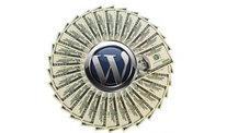 WordPress, Googlea Rakip Oldu