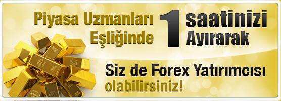 Forex ekonomik haberler