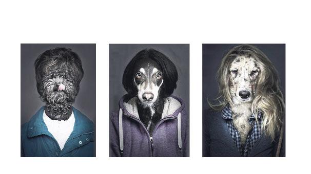 Köpekler sahibine benzer!