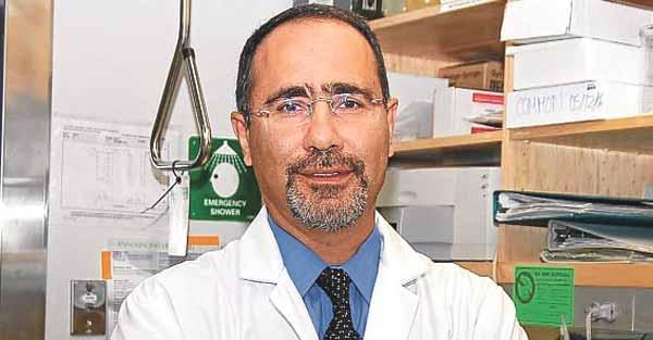 Harvard'daki Türk Profesörden ürküten kehanet