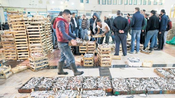 Balık avı yasağı başladı yeni sezon 1 Eylül'de