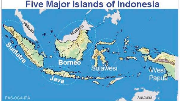 Endonezya nın ada sayısı 1286 arttı