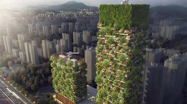 Çin, ilk dikey ormanı için çalışmalara başladı