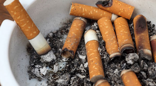 sigara zararlar  essay