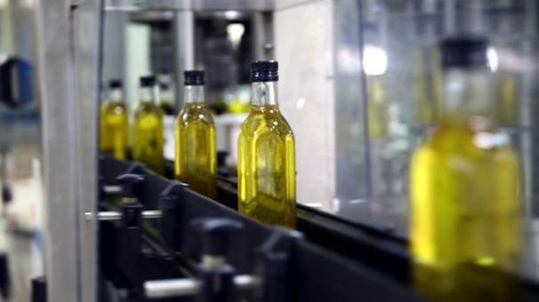 Zeytinyağı üretimi artışında zirve Türkiye'nin
