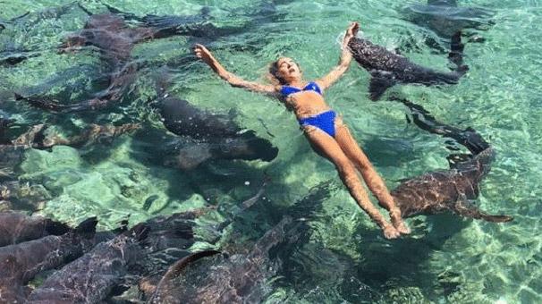Katarina Zarutskie köpekbalığı saldırısına uğradı!