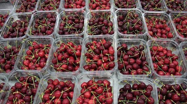 Türk meyve sebzesi 50 ülkeye 'uçarak' girdi