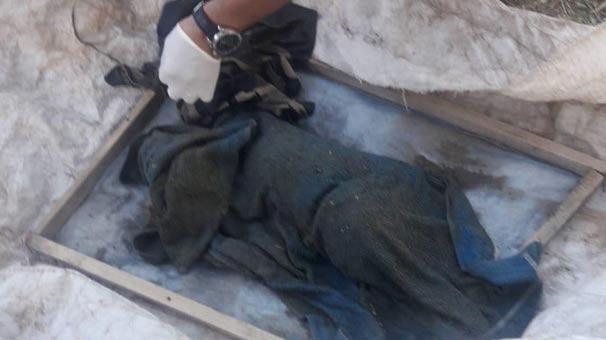 Van korkunç olay! Derede bebek cesedi bulundu…