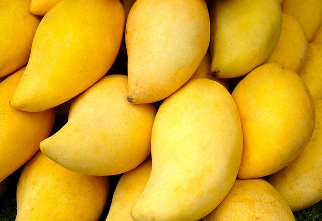 Mangonun faydaları nelerdir?