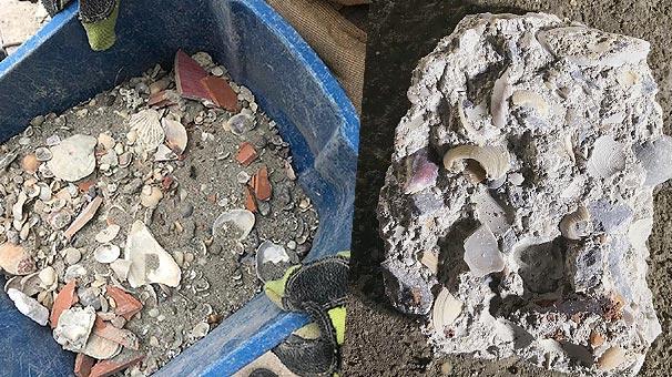 Son dakika: Kartal'da çöken binanın enkazındaki deniz kabukları görüntülendi