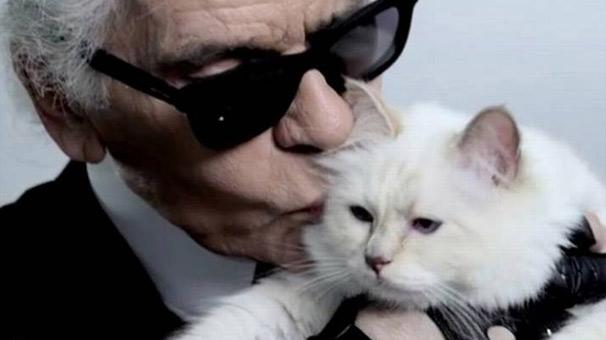 200 milyon dolarlık servet kediye kalabilir