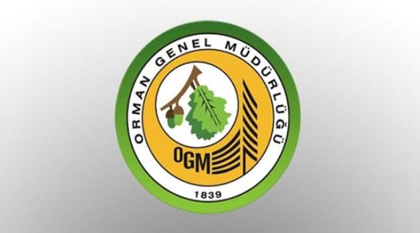 Orman Genel Müdürlüğü hangi bölümlerde alım yapacak? OGM personel başvuruları