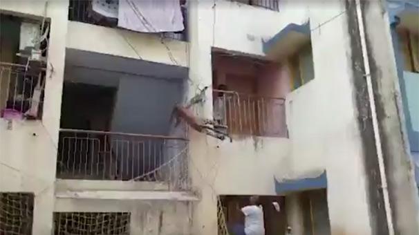 Tüm mahalle çığlık çığlığa!
